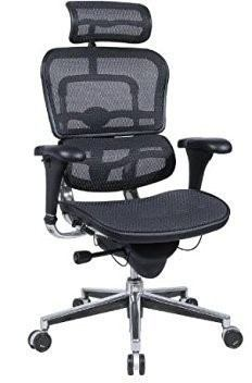 I Would Suggest You To Ergohuman High Back Office Chair