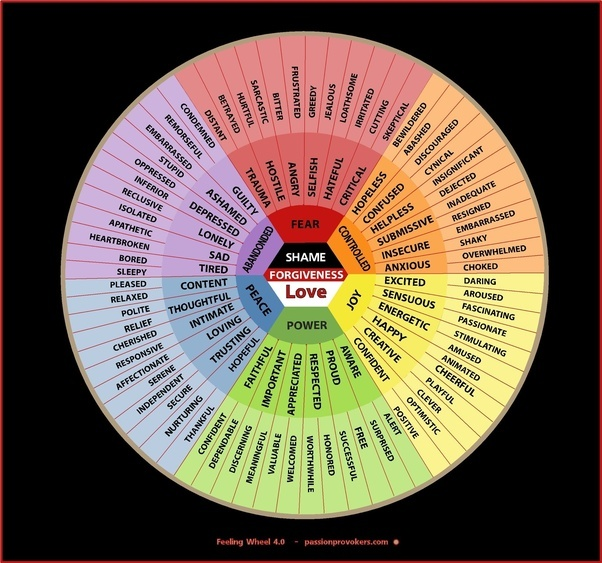 what aspects of human emotions appear to be innate
