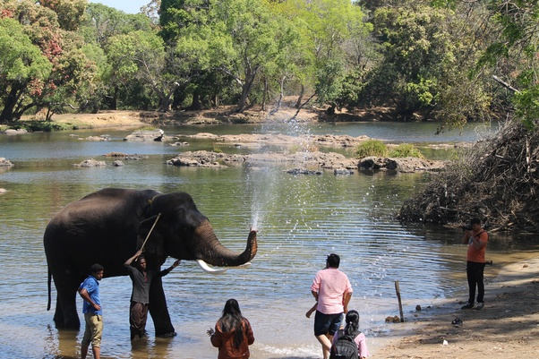 What are the best places to visit in Coorg during the month
