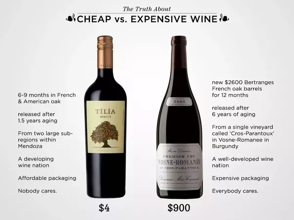 Does More Expensive Wine Taste Better Quora