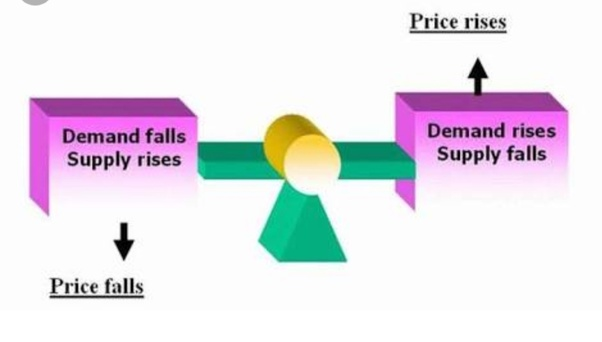 What are the important questions in economics for class 11