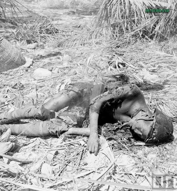 What are some of the saddest pictures of war? - Quora