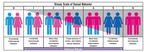 Difference between bisexuality and homosexuality