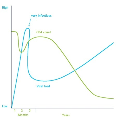 The Ilration Shows Normal Pattern Of Viral Load Blue And Cd4 Count Green Over Course Infection Normally Drops Sharply Around 2