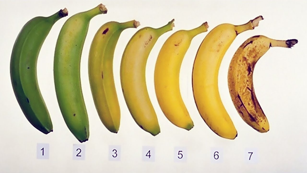 why do bananas ripen