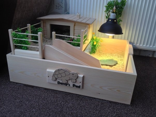 How to set up an aquarium for my tortoise quora i got the photo below off google and isnt mine but demonstrates the concept aloadofball Choice Image