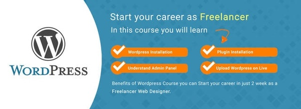 Which Are The Best Institutes For Wordpress Development In Pune Quora