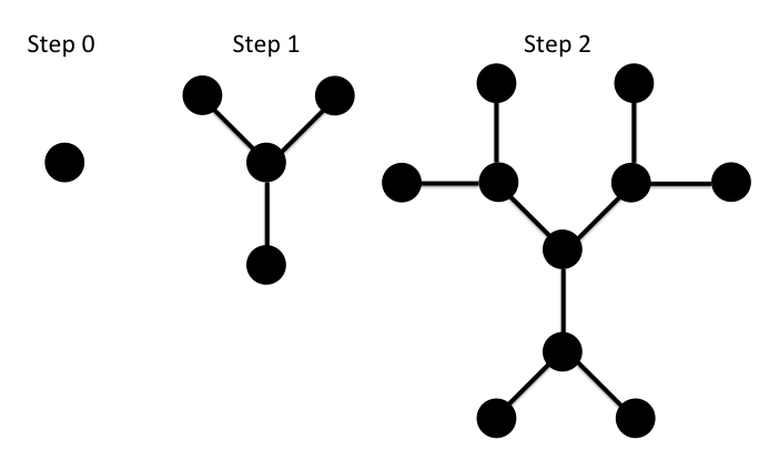 Consider Starting With A Single Node And Building Out A Network Where Each Node Is Connected To Three Others And There Are No Closed L