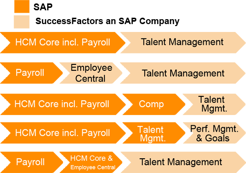 What Will Be The Future Of The Sap Successfactors Will It Replace Hcm
