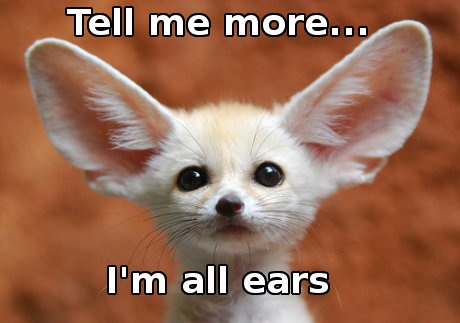 Image result for all ears meaning