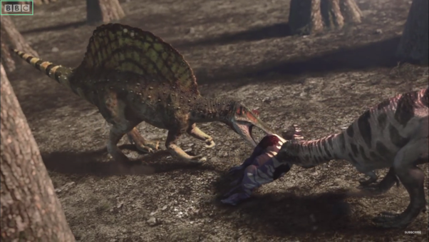 Who would win in a fight, Carcharodontosaurus or ...Giganotosaurus Vs Spinosaurus Who Would Win