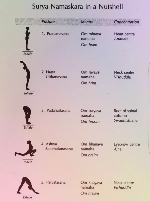 What Are The 10 Steps And 14 Steps Of Suryanamaskar Yoga Quora
