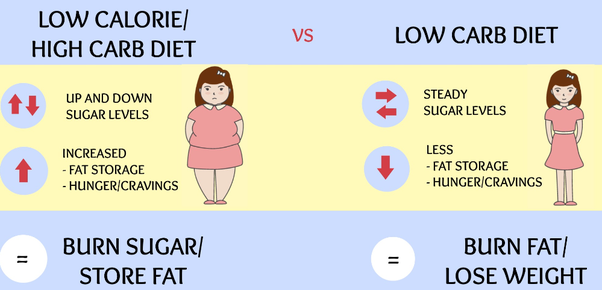 How Effective Are Low Carb Diets For Weight Loss Quora