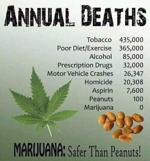 Bad Weed