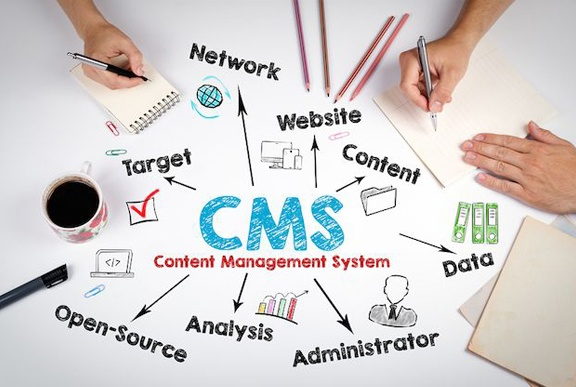 Who are some of the best CMS developers in India? - Quora