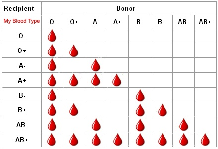which is the universal donor blood group o or o quora rh quora com