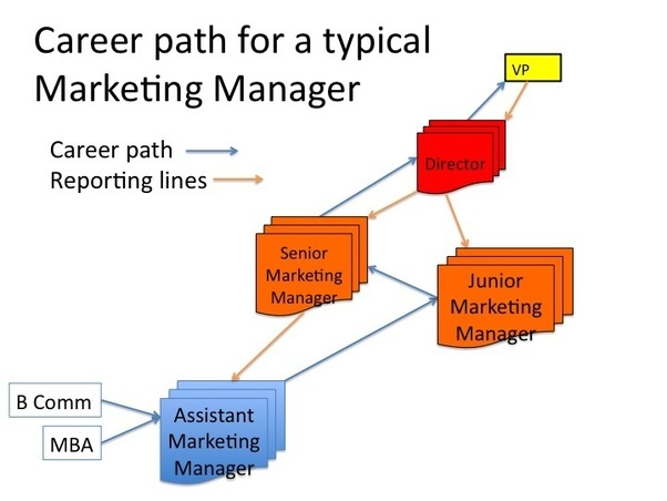 how to find a good career path