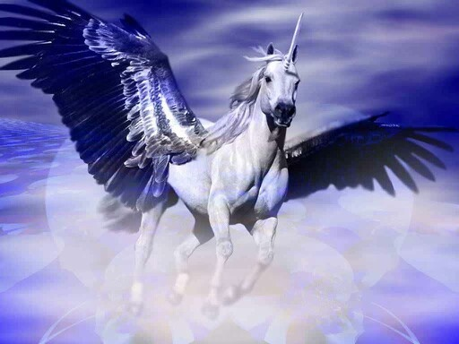 Can unicorns fly or are they just basically horses with a horn Quora