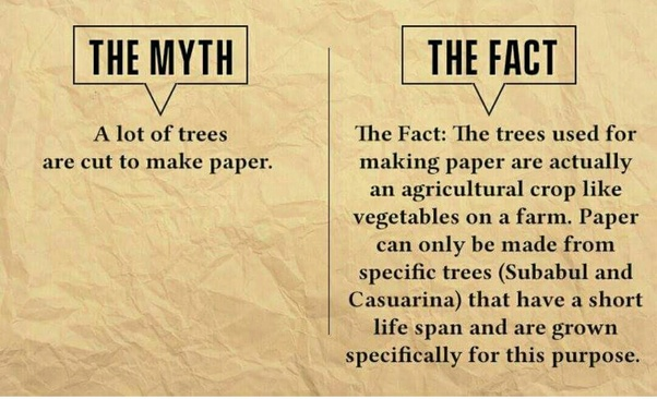 Most Interesting Facts >> What Are Some Interesting Facts About Paper Quora