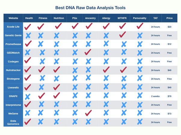 Which ancestry tools can be used to analyze 23andMe raw data