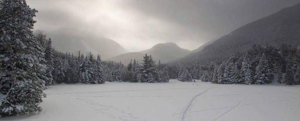 Raquette lake essay