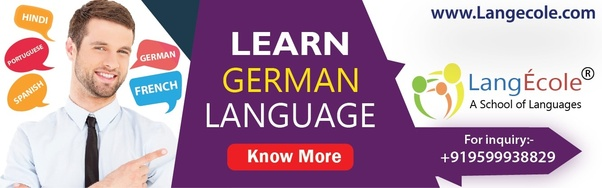 Which institute is best for foreign language courses in