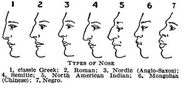 Nostril flaring in European populations