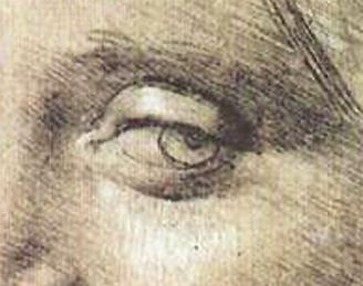 Contour Line Drawing Leonardo Da Vinci : What can i do to improve my eye drawings quora