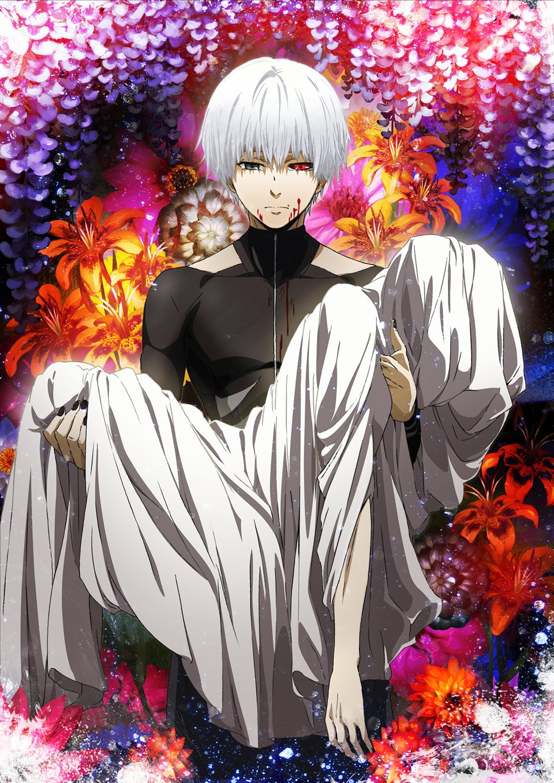 🏷️ Tokyo ghoul re volume 14 download   VIZ  2019-04-26