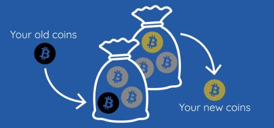 So erhalten Sie kostenlose Bitcoins in Deep Web