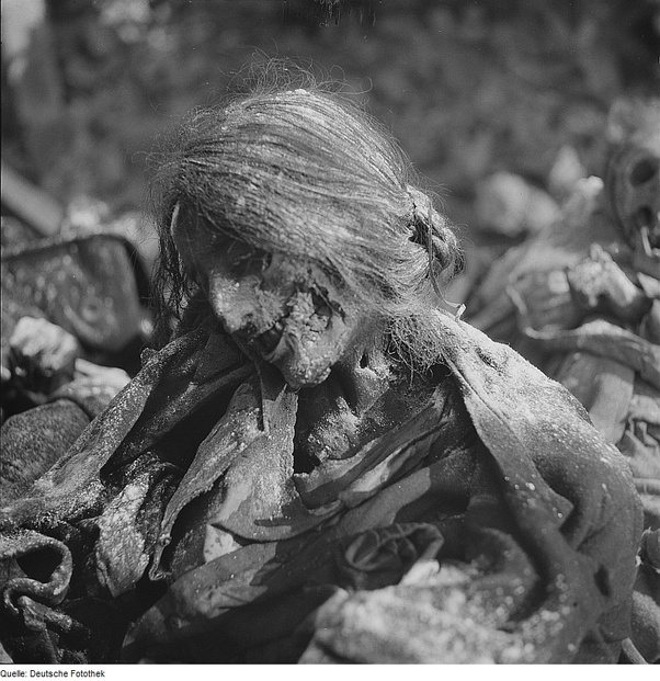 Was world war 1 more chaotic and deadly than world war 2 quora this is the results of the firebombing of the german city of dresden the city where anywhere from 22000 to 25000 people died in the raid altavistaventures Images