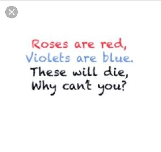 What are some of the best 'Roses are red' poems? - Quora