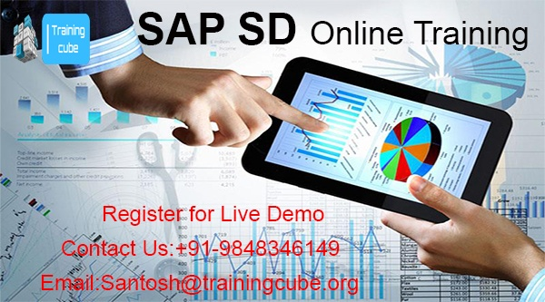 What is the SAP SD? - Quora