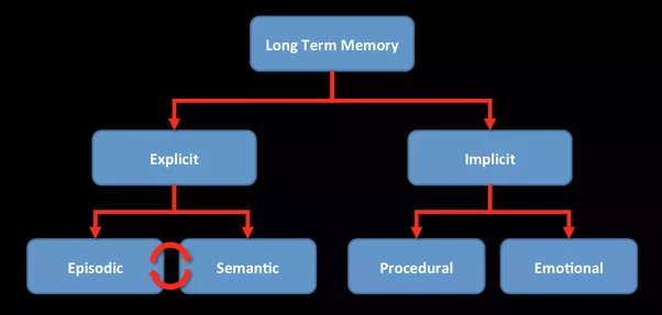 What Are Examples Of Explicit And Implicit Memory Quora