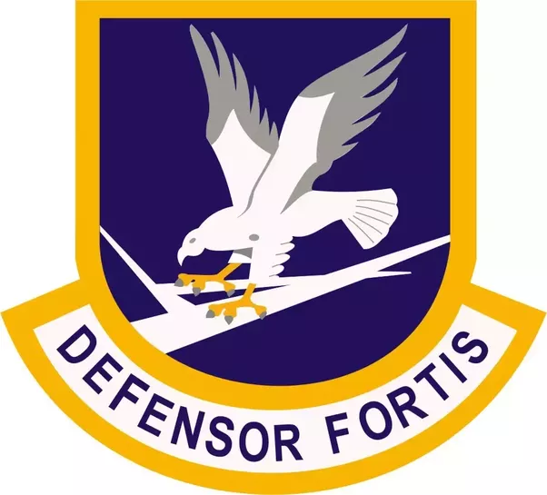 What Does The Logo Of The United States Air Force Security Forces