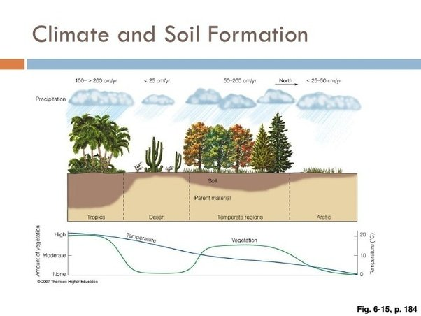 How will climatic condition affect the soil of a place for Soil forming minerals