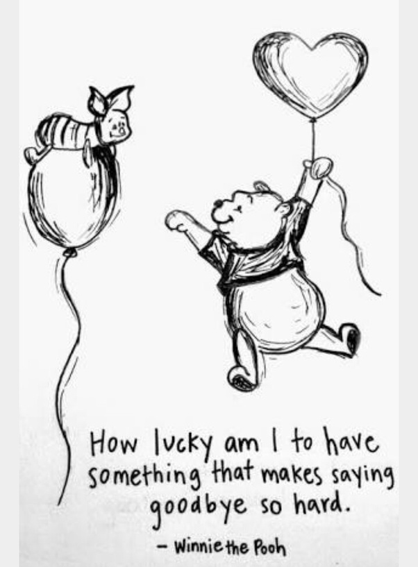 Winnie The Pooh Quotes   What Are The Best Quotations From Winnie The Pooh Quora