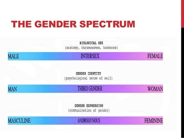 If Gender Exists On A Spectrum Isn T Everybody By Definition