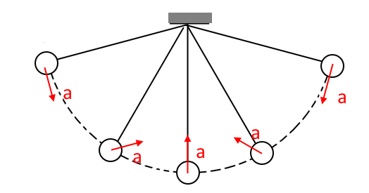why the direction of acceleration is towards the center in simple pendulum case