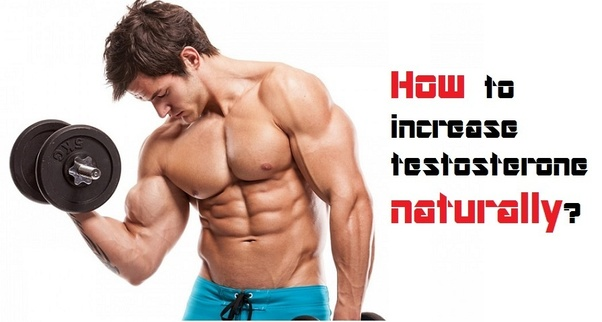How can a man increase his testosterone? - Quora