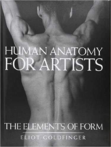 Where can I learn anatomy for drawing? - Quora