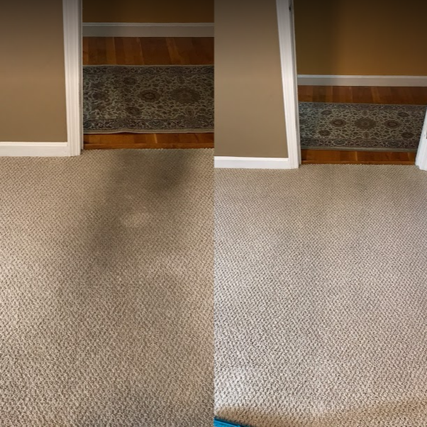 How Much Does Carpet Cleaning Cost Quora