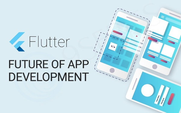 What is the future of flutter? - Quora