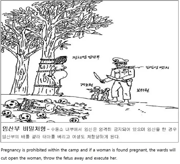 Image Result For North Korean Labor