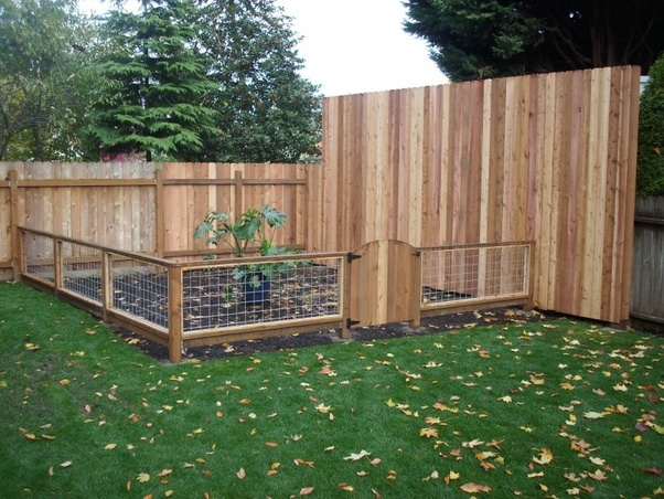 How to make a fence that keeps chickens out of my raised