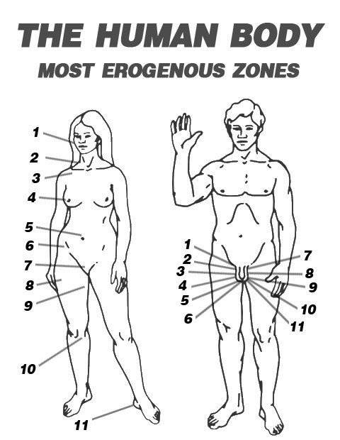 Have Massaging female erotic zones similar situation