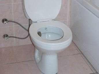 how to clean stains off bottom of toilet seat