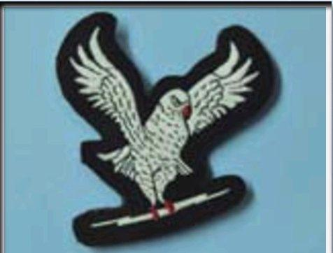 What Are The Different Badges Worn By Indian Air Force Ground Crew