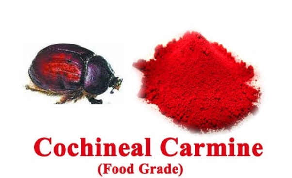 Is red food colouring really made from bugs? - Quora