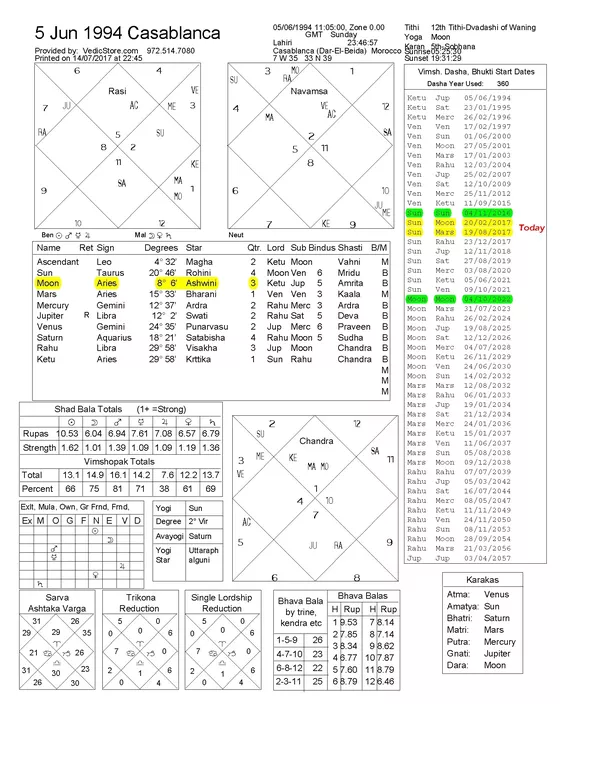 Vedic Astrology How To Interpret Dasamsa